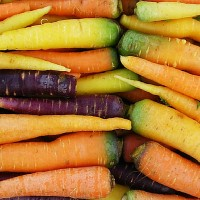 red_carrots